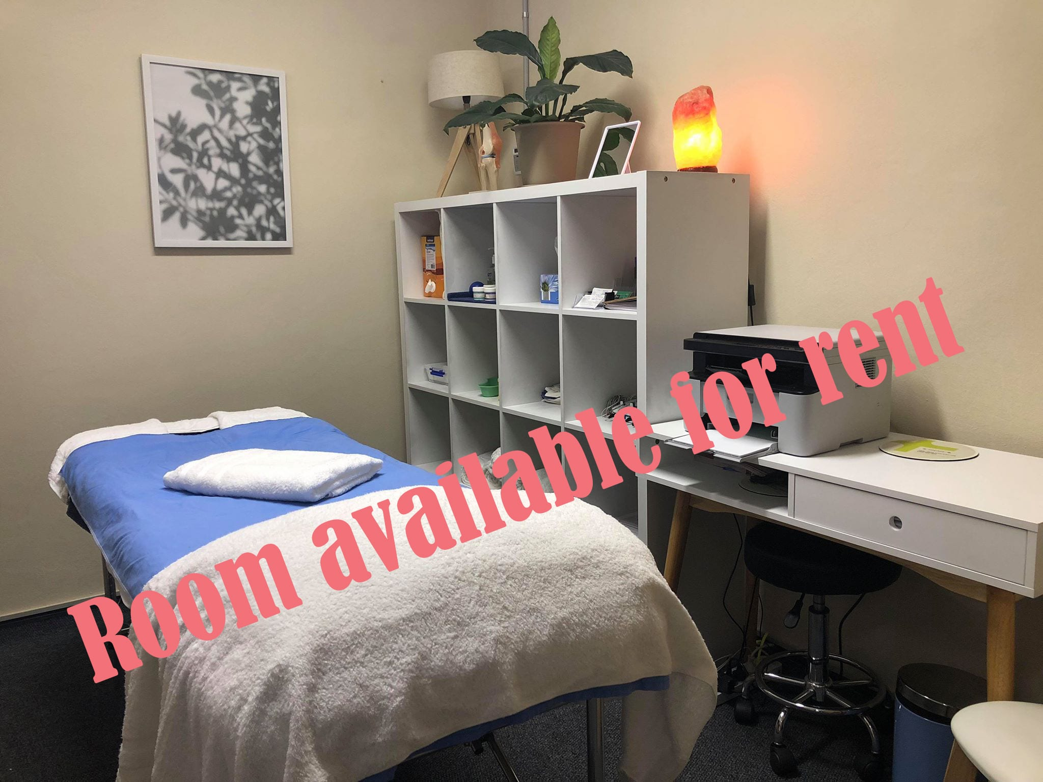 Professional Room For Rent